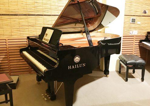HAILUN AG-198E